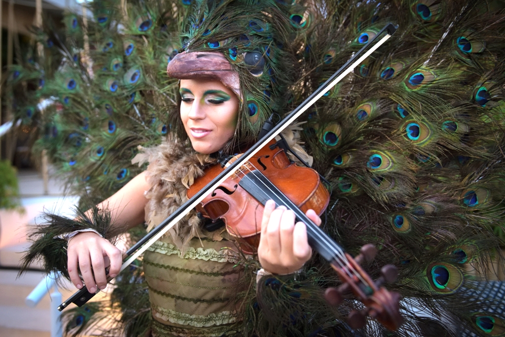 birthday party entertainment with peacock clad violinist