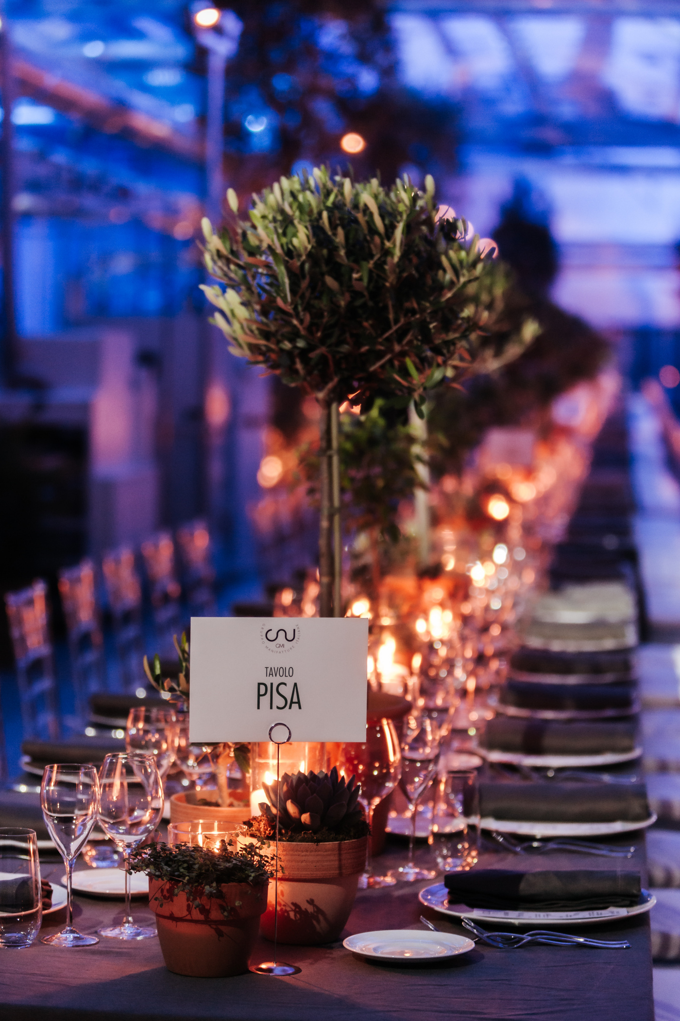 table decor with small olive tree and candles for corporate event
