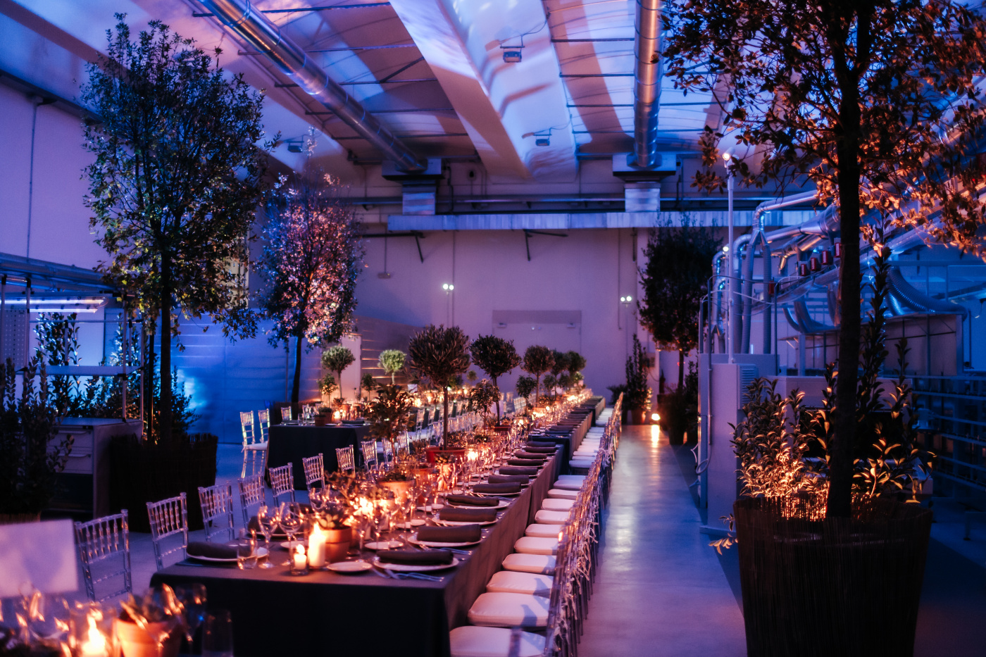 Plants and candles for a corporate event decor