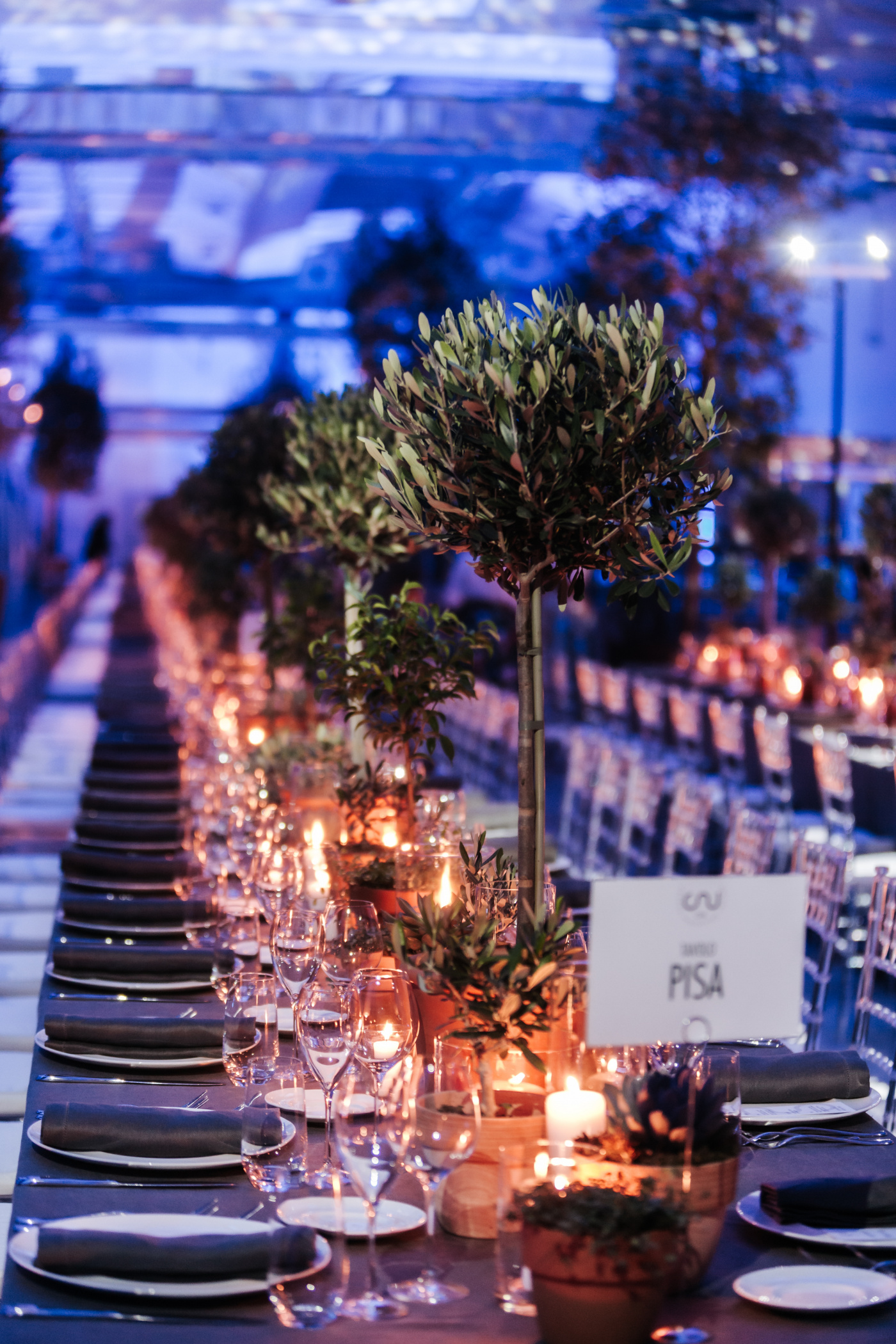 Olive plants and herbs with candles for a corporate event dinner